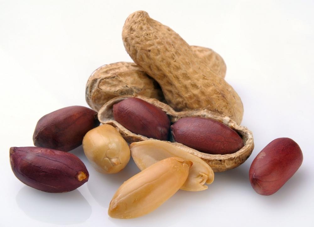 Kikiriki pečeni neslani 100g - rinfuz | Herbasana