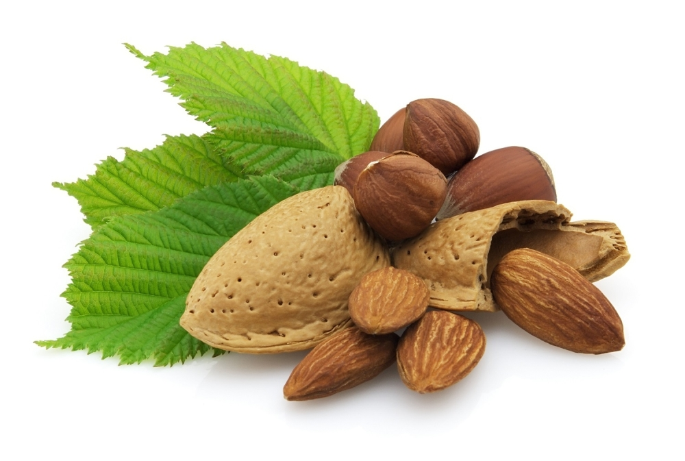 Lešnik Lešnici Badem Bademi Koštunjavo voće