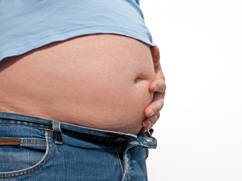 Big stomach belly fat — pic 3