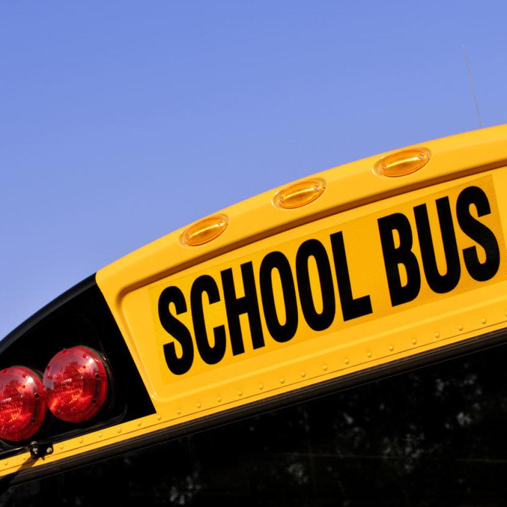 Vesti - Država uvodi školske autobuse?