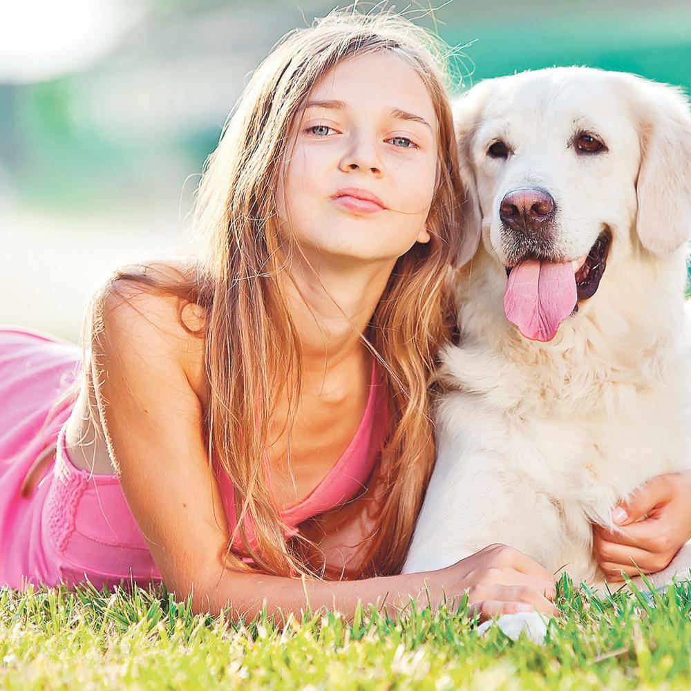 Ovo-je-10-najzdravijih-pasa-na-svetu