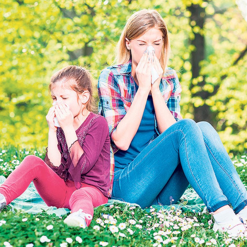 Ublazite-simptome-alergije-na-ambroziju