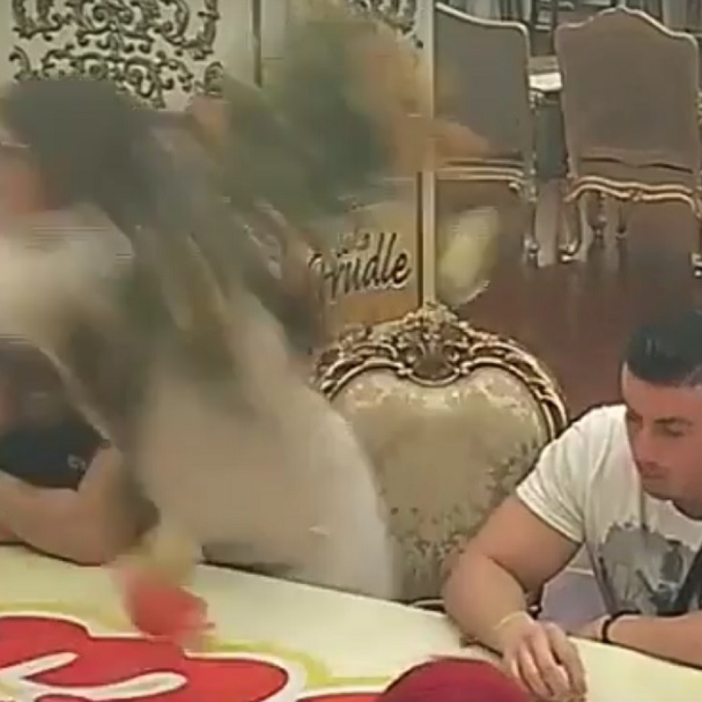 Dalila-nasrnula-na-Milija-VIDEO