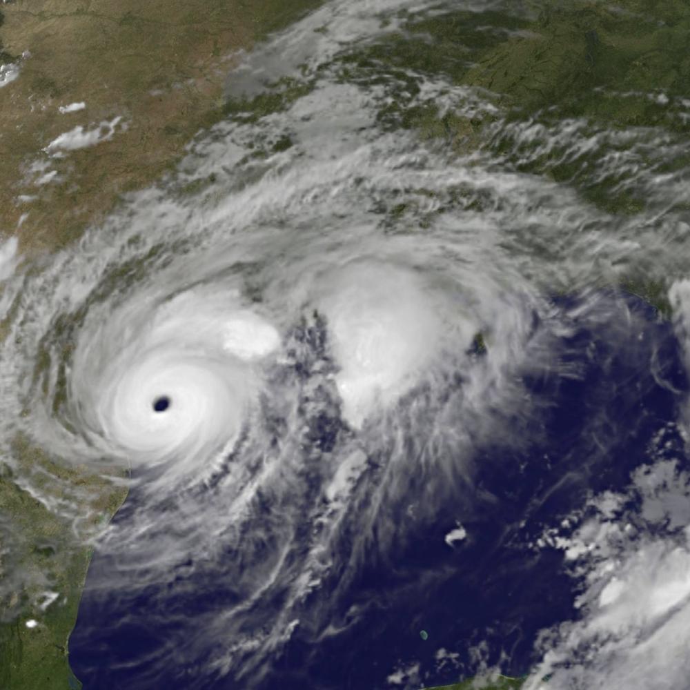 Uragan-izbacio-na-obalu-cudoviste-iz-morskih-dubina-FOTO