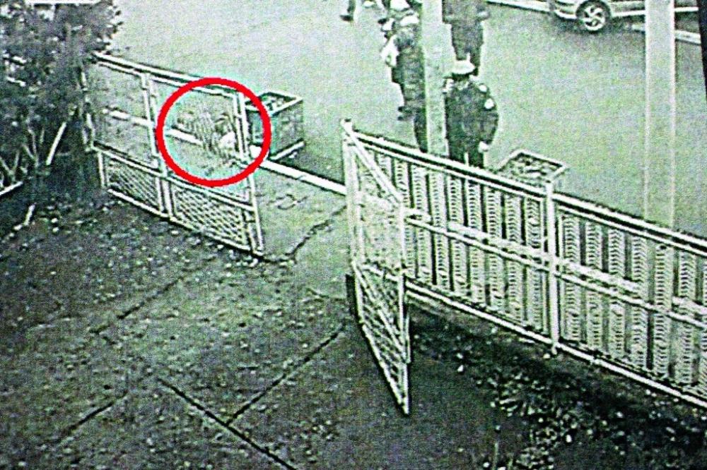 Ekskluzivne fotografije ubistva Olivera Ivanovića