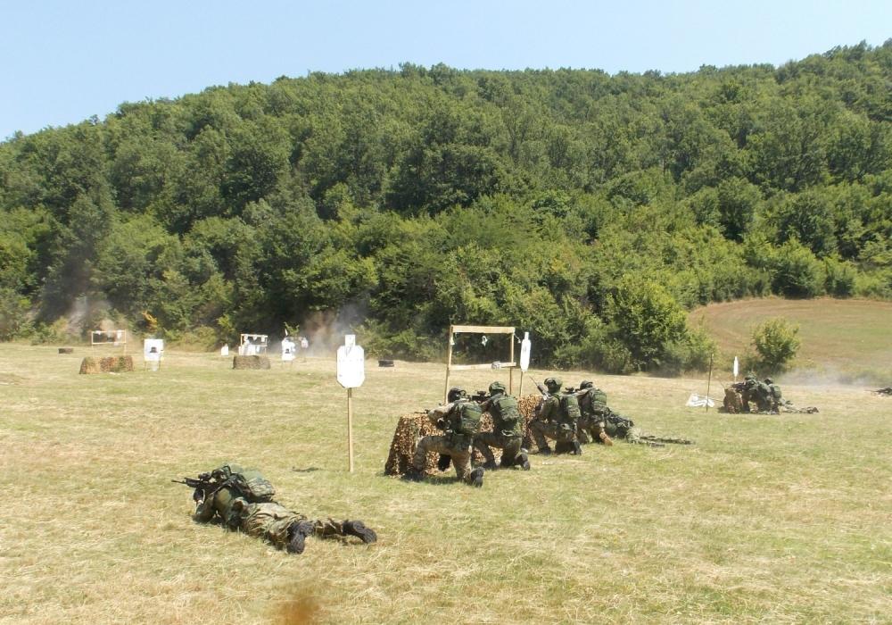 Vojska Srbije, grčka,