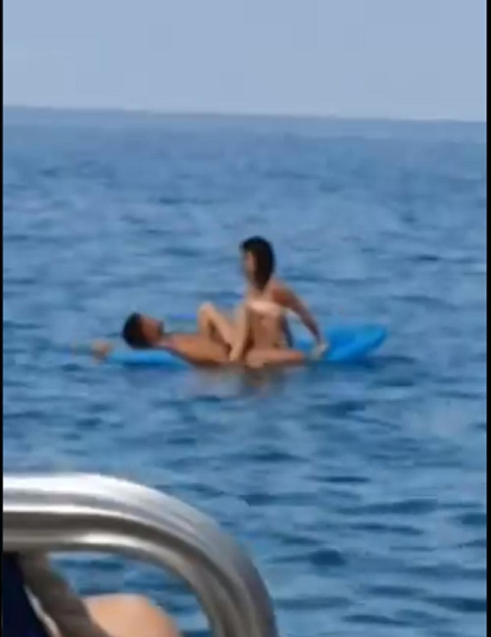 free anime shemale porno