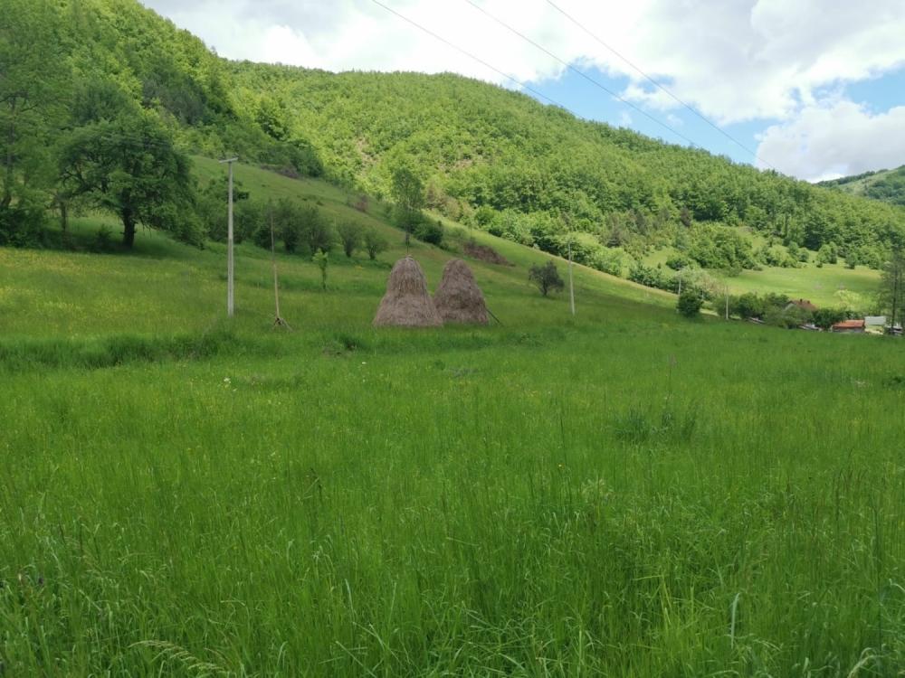 Selo Štava