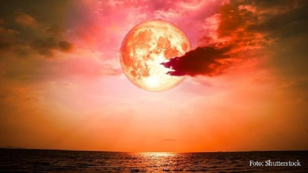horoskop, nebo, priroda