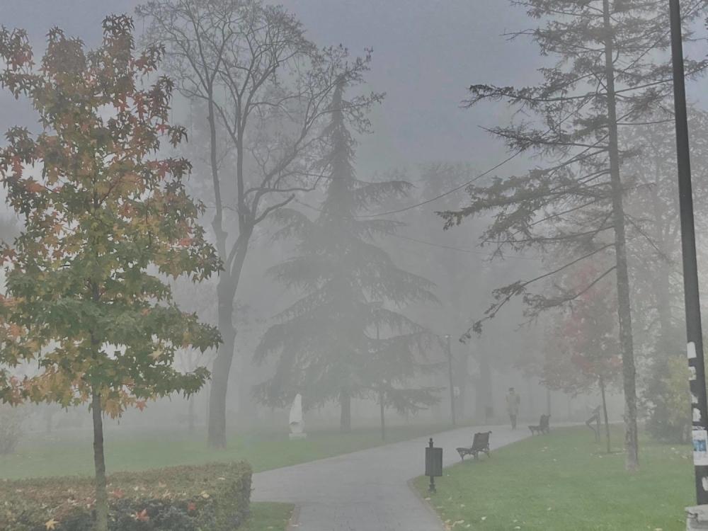 Magla, zima, vremenska prognoza