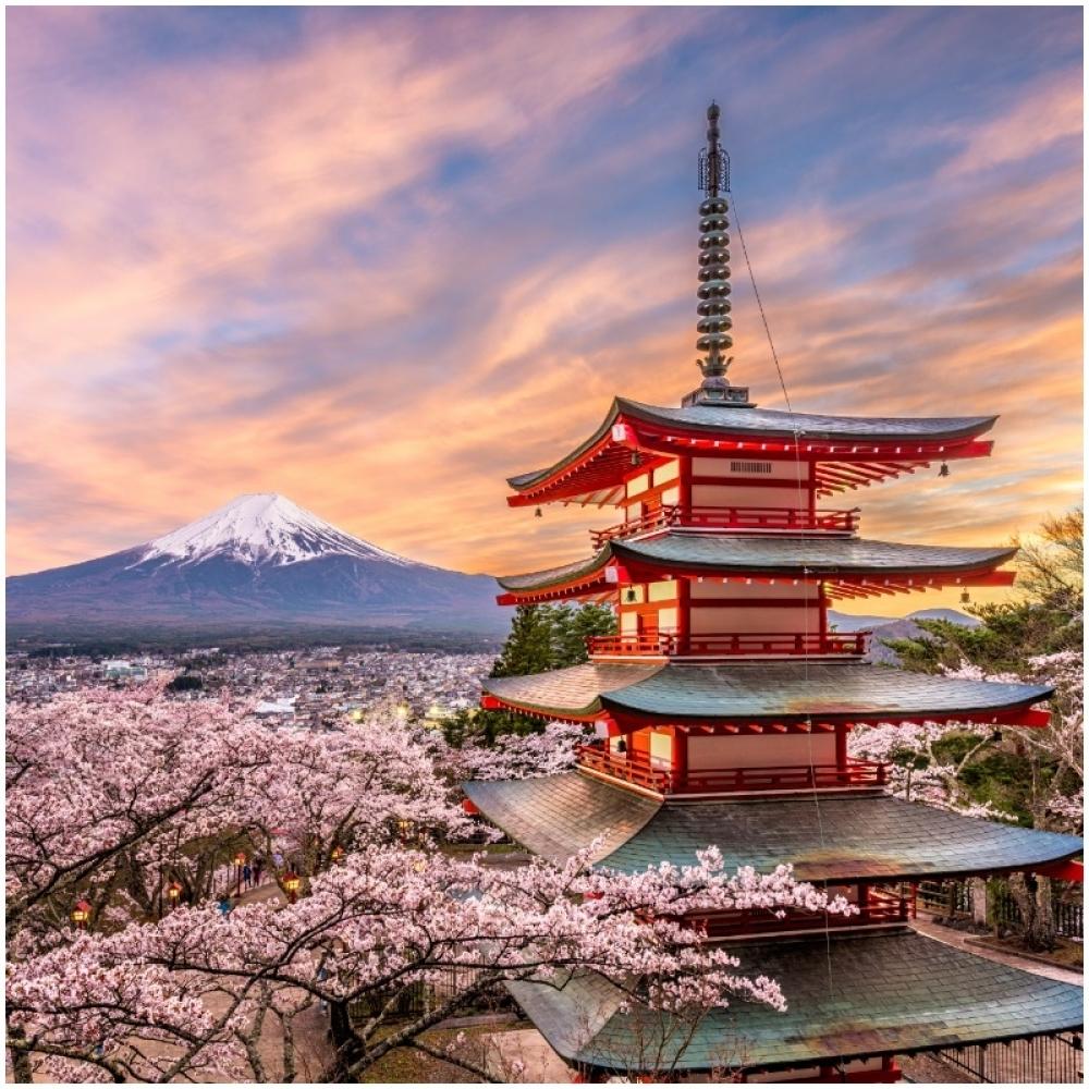 japan, prolece, priroda